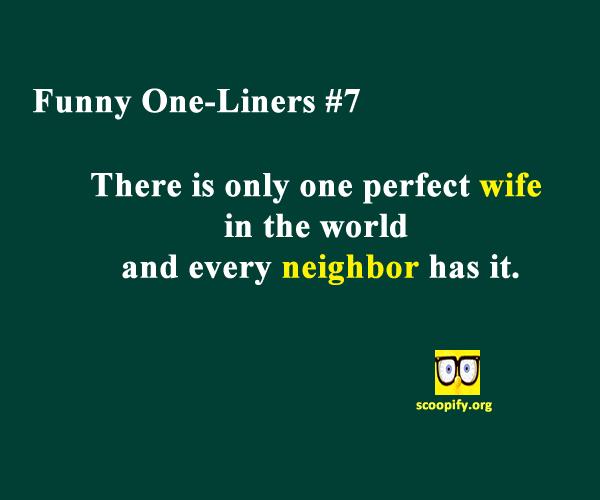 Funny One Liners: Hand-Picked Collection to Make You Laugh ...