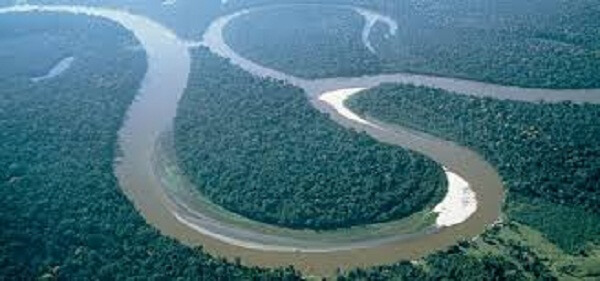 Amazon-rainforest-facts-17