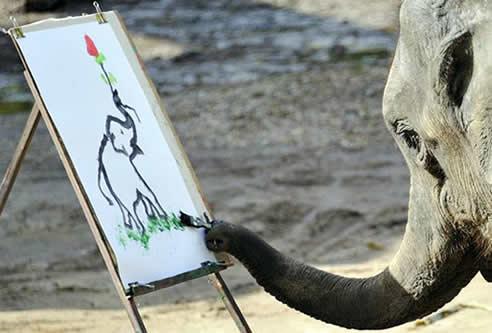 Most Amazing Video- Elephant Painting Elephant Performance
