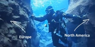 swim between two continents