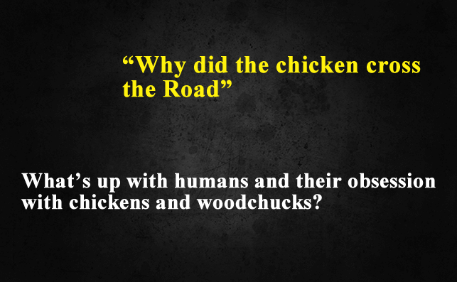 Funny Things To Ask Siri-Why did the chicken cross the road