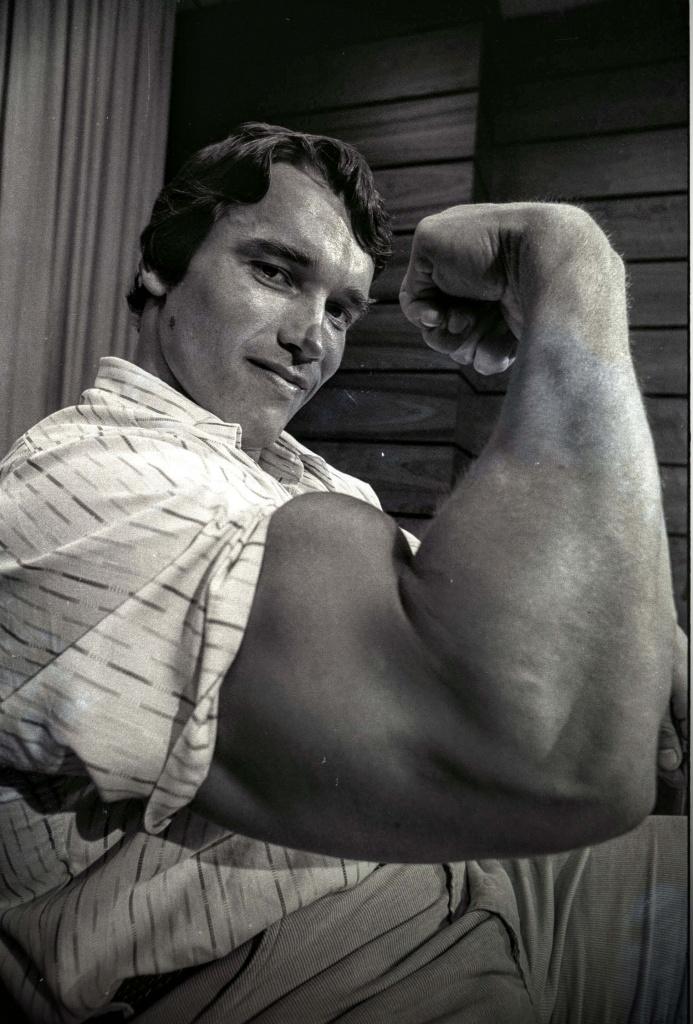 Arnold Schwarzenegger net worth 2