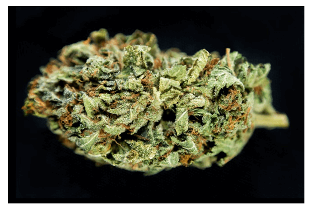 How Long Does Marijuana Stay In Your System - short term effect