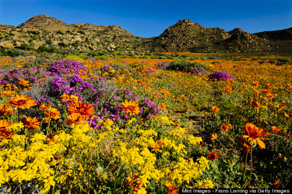 The Most Beautiful Places In The World You Didn't Know Existed-NAMAQUALAND - SOUTH AFRICA