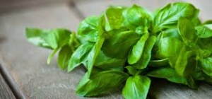 basil leaves to get rid of dandruff