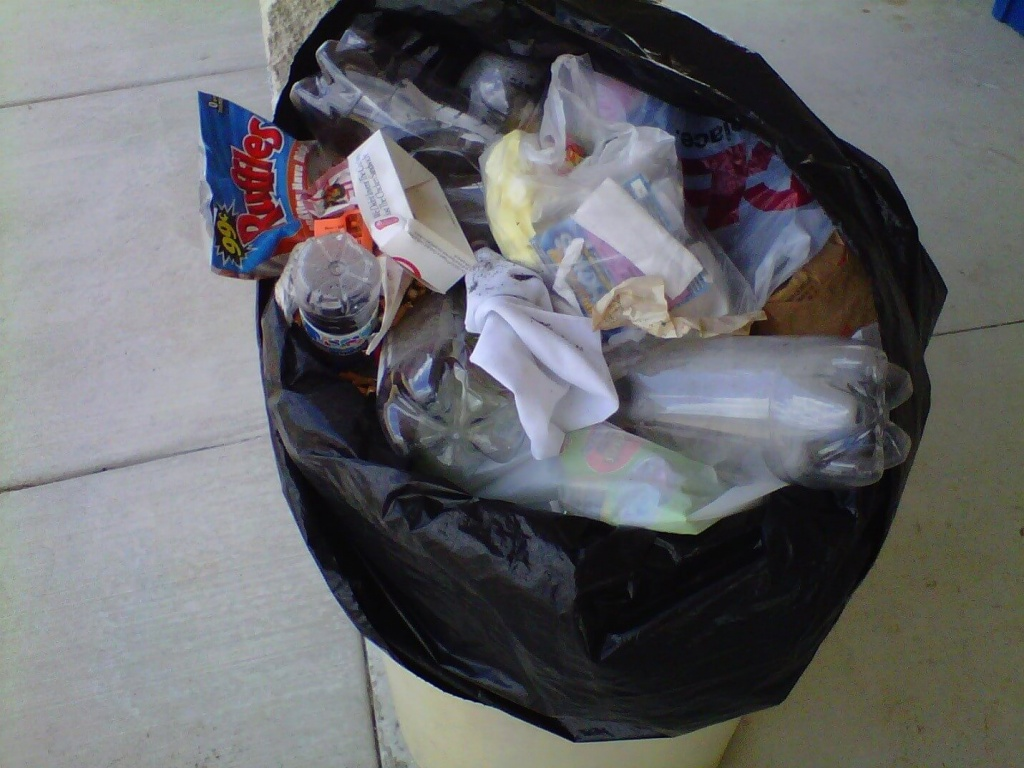 Get Rid Of Gnats In The Kitchen trash bags