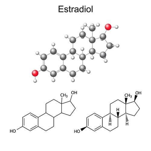 Balancing Estrogen Levels