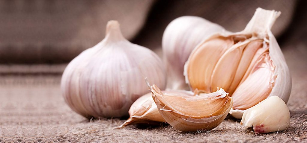 garlic - Slow Down the Aging Process