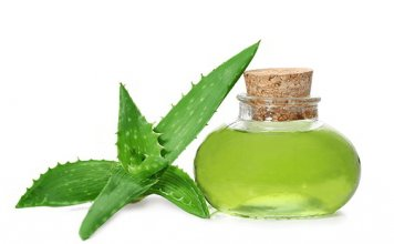 Aloe-Vera to cure skin damage