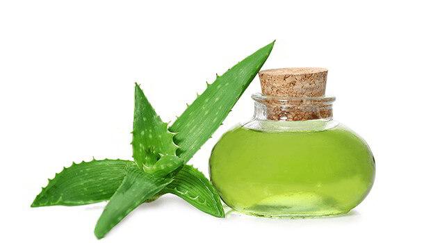 Aloe-Vera to cure skin damage