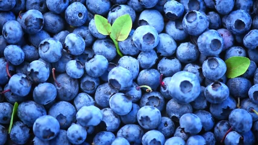 Blueberries for Wrinkles