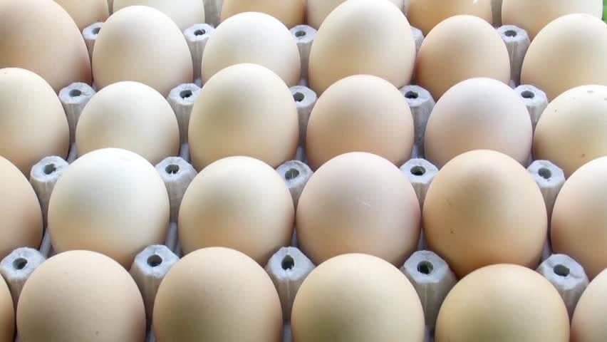 Eggs for Wrinkles