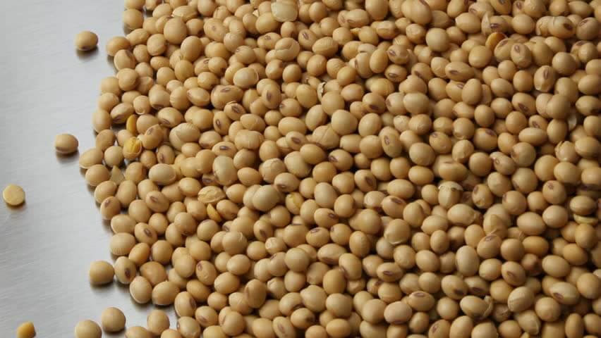 Soy Beans Foods for Wrinkles