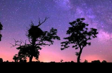 Best Stargazing Destinations