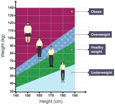 Relationship between height and weight