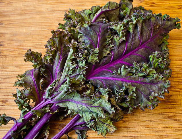 benefits of Red Russian Kale