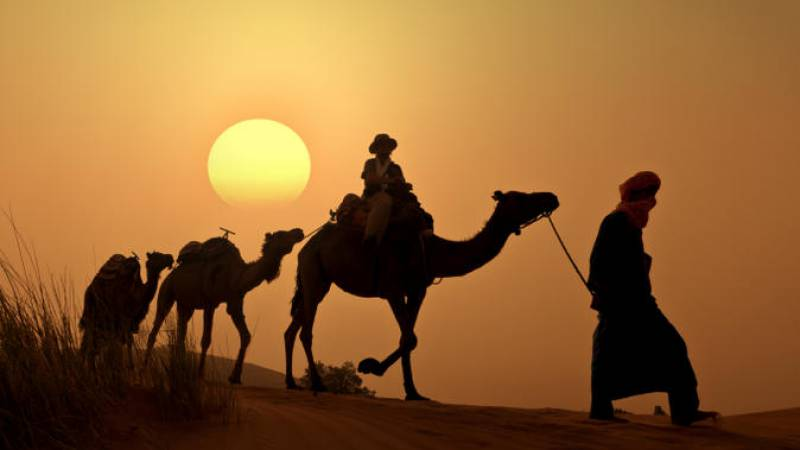 things to do in dubai: camel ride