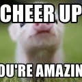 cheer-up meme