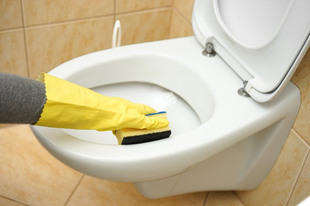 The Challenges Of Maintaining Our Toilets