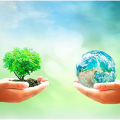 Socially Responsible Investing