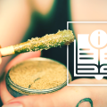 Guide to Cannabis Concentrates
