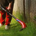 Things to Do If Your Weed Eater Doesn't Start