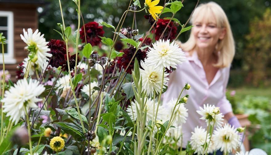 blend into your garden