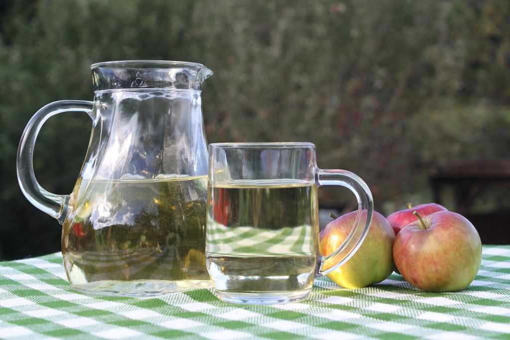 acv for weight loss