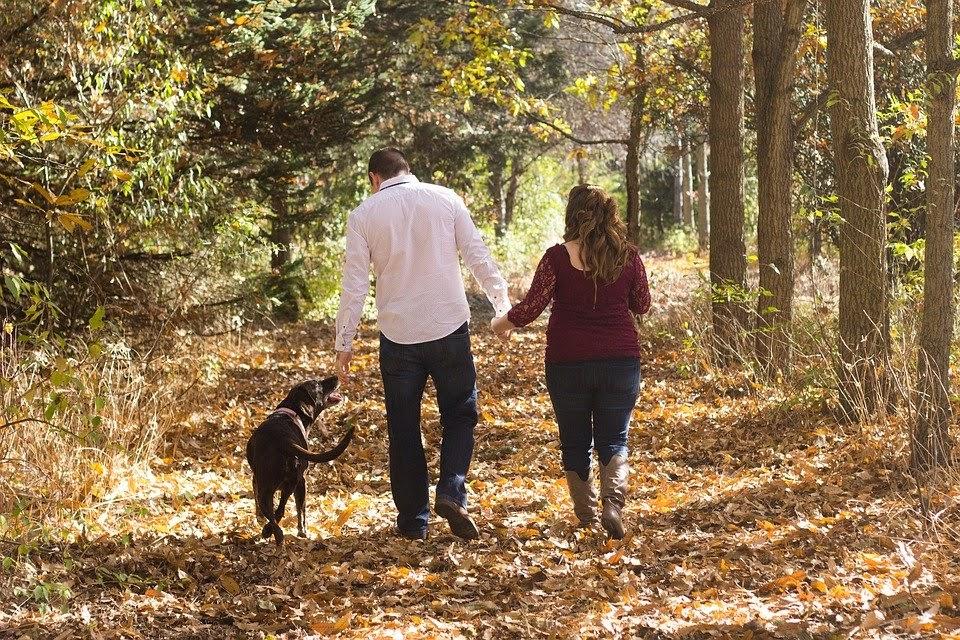 7 Ways Keep Family Healthy