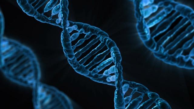 Gene Editing and Hearing Disorders